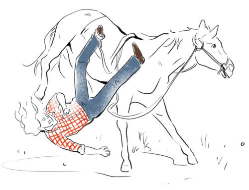 The Runaway Horse